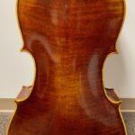Encore Cello Back
