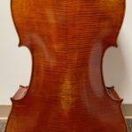 Premium Cello Back
